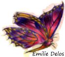 Capture png papillon pour les debuts 1